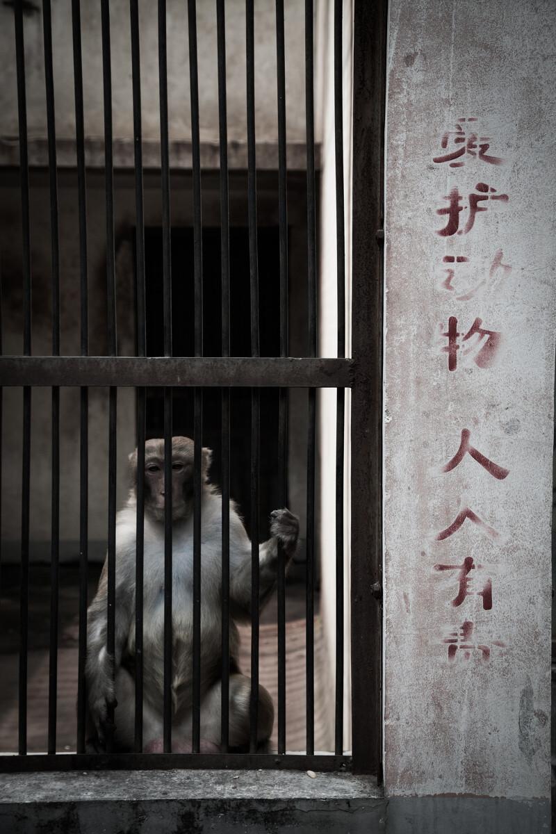 一周投融资小结(2013.11.25-12.1)