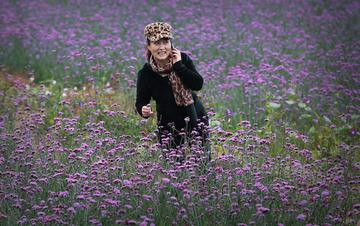 分享薰衣草的芳香