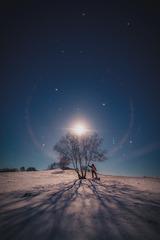 月下孤影唯我独行