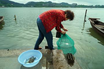 江南·网湖虾·东钱湖四大名菜之一