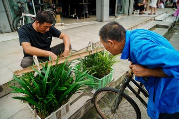 江南•古镇古街抢救性拍摄系列之九十二•宁波柴桥