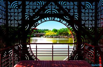 中国·天津·临港湿地