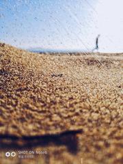 沙滩上行走的人