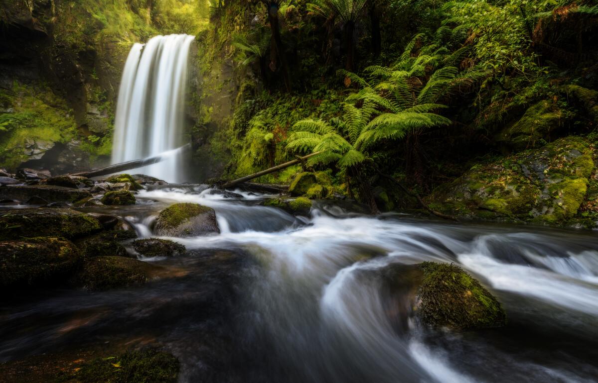 维州的深山老林,除了一条深不见底的小径完全是原始森林的模样,潮湿的土地,茂密的植物,厚厚的苔藓以及这树林深处的瀑布。
