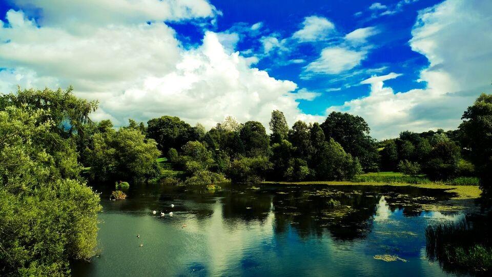 Airthrey Loch<br />