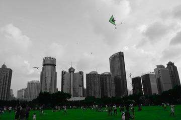 城市 绿地