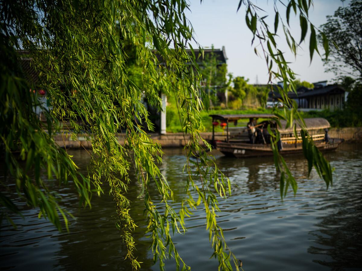 北京国安vs广州恒大董路李欣-你春节被逼婚的背后,藏着租赁行业的万亿生意