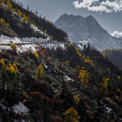 白马雪山之路