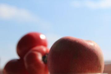 苹果和西红柿