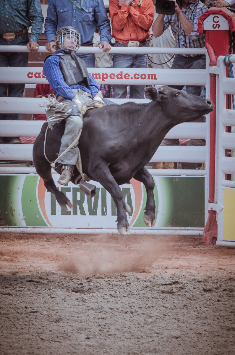 骑蛮牛(Bullriding):无疑是六项竞技中最危险的项目,被抛飞坠地、遭牛蹄践踏随时可能发生,未坚持八秒或空手碰触蛮牛的任何部位——出局。