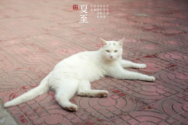 1xbet下载平台-16位互联网人讲述:我所经历的裁员_王磊水粉