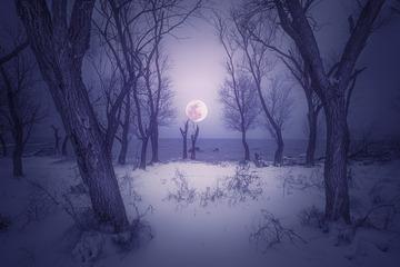 当2018的大雪碰到百年一遇的超级月食