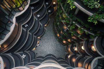 新加坡The Hive Building