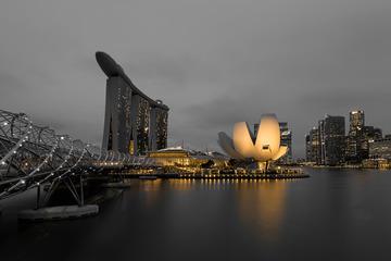 黑金版 新加坡