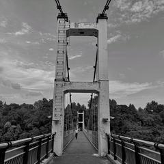 站在桥上看风景