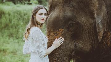 美女与大象