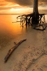 NC Lake Jordan