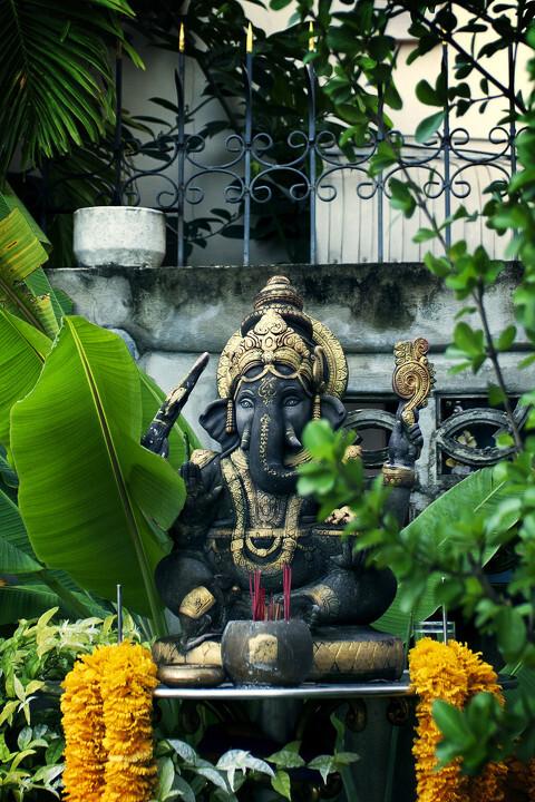 泰国象_象之国度-泰国篇 - oneQ1117 - 图虫网 - 优质摄影师交流社区