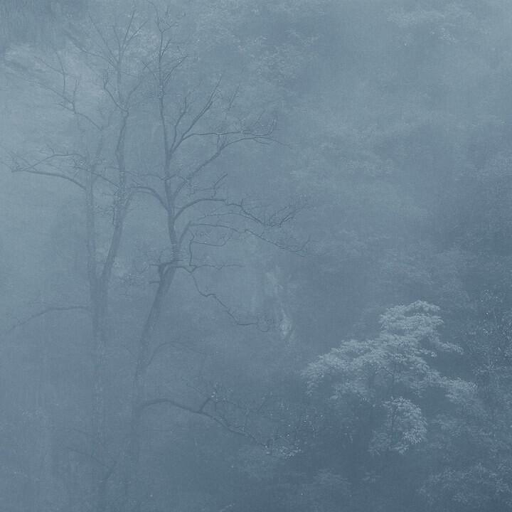 3月影赛建筑风景篇二等奖  秋寒<br /> 邹苏斌(江西乐平) 本片拍摄于浙江临安大明山景区。秋天带来了凛冽的寒风,带来了枯枝凝寒的景象,寒气遍布每个角落,让我们感觉到了秋末冬初的寒冷,曾经生机勃勃的树木也终于坚持不住,都枯萎地进入了梦乡。