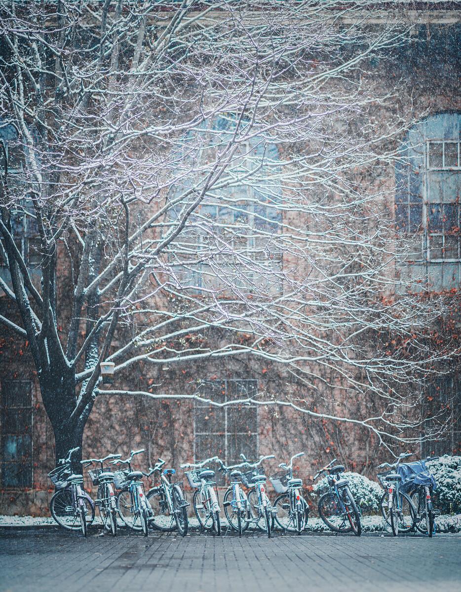 图书馆老馆下的自行车