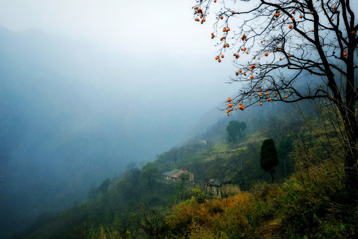 bet356娱乐网页版登陆-黄淮江淮有大雾能见度低 南方地区仍有阴雨天气