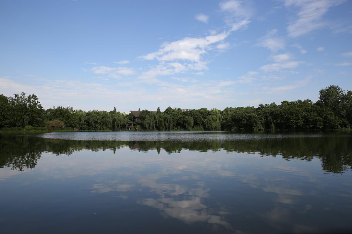 湖中看得见云的 倒影 。这在成都是很少见的!